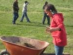 Radish Planting