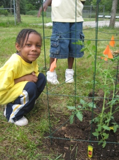planting 10