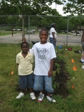 planting 6