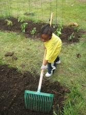 planting 8