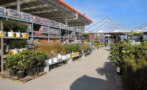 Home-Depot-Garden-Center2